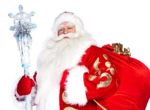 C Toy.ru быть Дедом Морозом – проще простого!